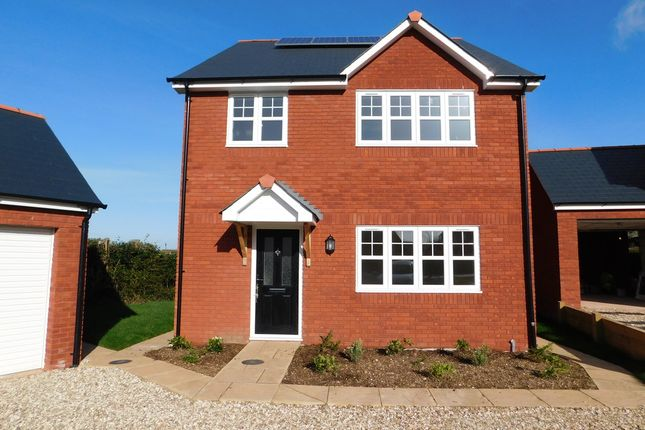 Thumbnail Detached house to rent in Green Lane, Feniton, Honiton