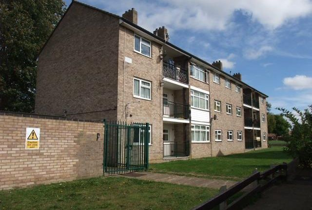 Thumbnail Flat to rent in Elm Close, Huntingdon
