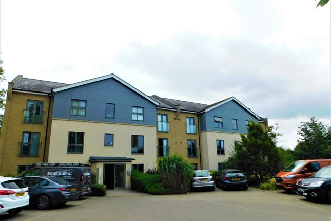 Thumbnail Flat to rent in Bradman Court, Colchester