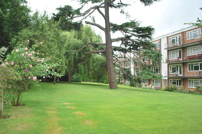 2 bed flat to rent in Lovelace Road, Surbiton