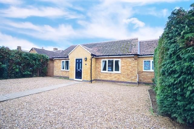 Thumbnail Detached bungalow to rent in Northampton Road, Broughton, Kettering