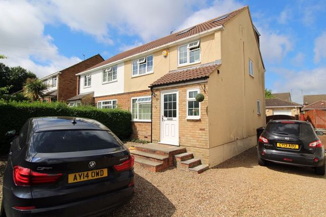 Thumbnail 5 bed semi-detached house to rent in Stanton Road, Luton
