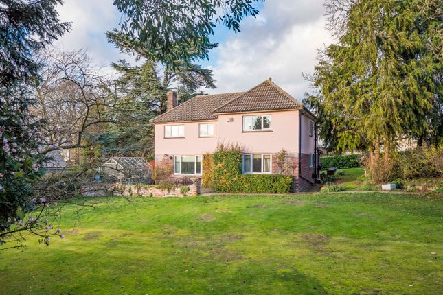 Thumbnail Detached house for sale in Newton Road, Sudbury
