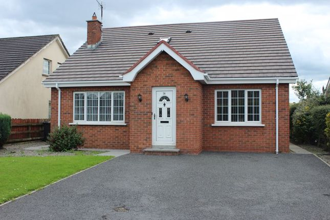 Thumbnail Detached house for sale in Carraigh Dua Heights, Belleeks, Newry
