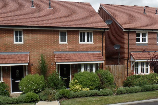 Thumbnail Semi-detached house to rent in Treetops Way, Heathfield