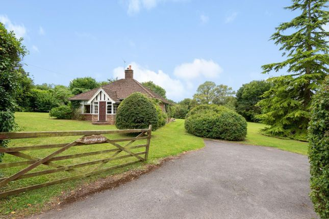 Thumbnail Detached bungalow for sale in Lark Rise, East Horsley