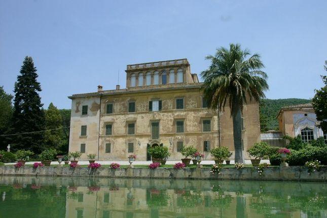 Villa Fontana Main Photo
