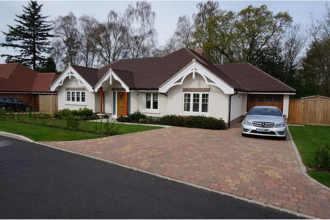 Thumbnail Bungalow for sale in Bracklyn Close, West Chiltington