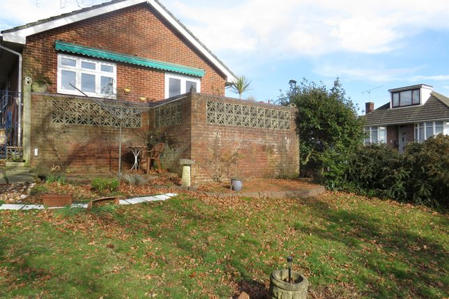 Thumbnail Detached bungalow for sale in Squires Walk, Southampton