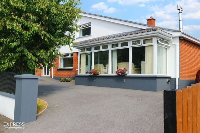 Thumbnail Detached house for sale in Sutton Gardens, Londonderry