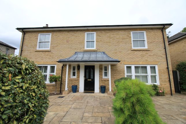 Thumbnail Detached house to rent in Owen Court, Norwich