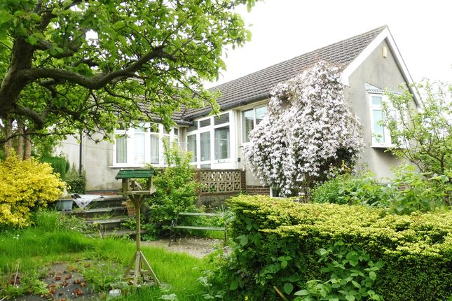 Thumbnail Detached bungalow for sale in Golden Valley, Horsley Woodhouse, Ilkeston