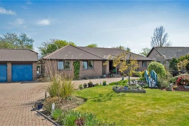 Thumbnail Detached house for sale in French Drive, Alford, Aberdeenshire