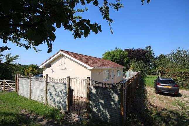 Thumbnail Bungalow to rent in Brendon Road, Watchet
