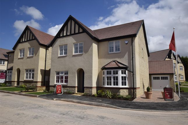 Thumbnail Detached house for sale in The Cheddar, The Chestnuts, Winscombe, Somerset