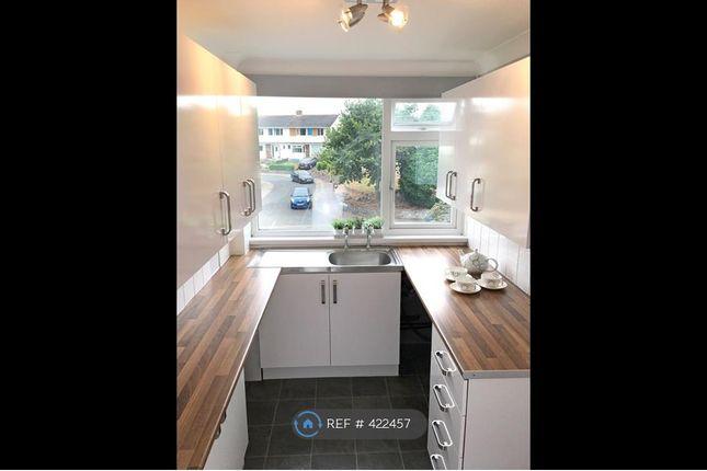Thumbnail Flat to rent in Queensway, Torquay