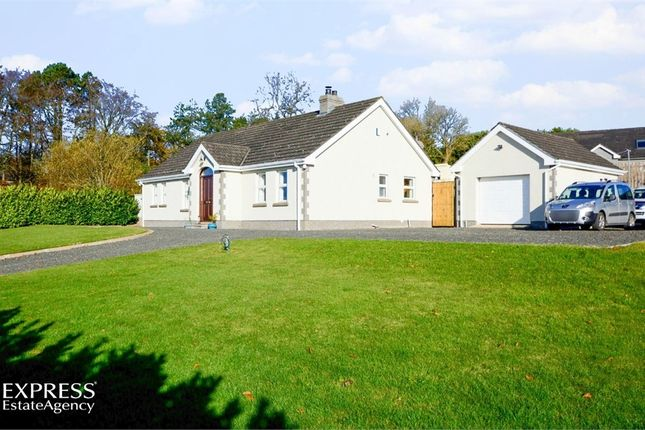 Thumbnail Detached bungalow for sale in Tully Road, Dunnyvadden, Ballymena, County Antrim