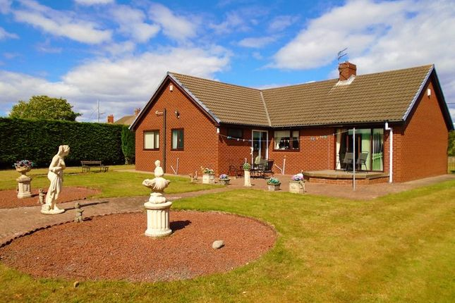 Thumbnail Detached bungalow for sale in Thornley Terrace, Bedlington