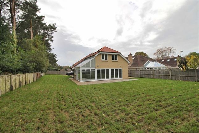 Thumbnail Property for sale in Peveril Close, Ashley Heath, Ringwood