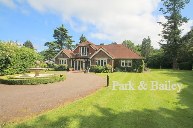 3 bed detached bungalow to rent in The Ridge, Woldingham, Caterham