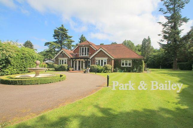 Thumbnail Detached bungalow to rent in The Ridge, Woldingham, Caterham