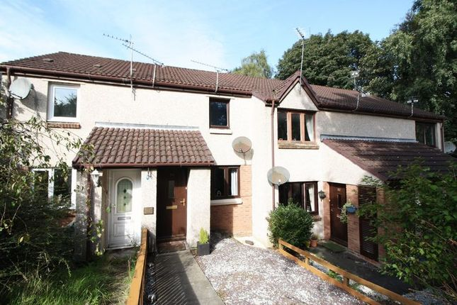 Thumbnail Terraced house for sale in Arns Grove, Alloa