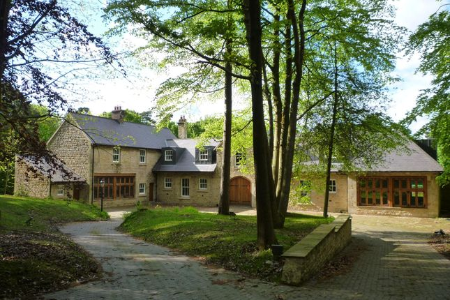 Thumbnail Barn conversion to rent in Wilderwick Road, East Grinstead