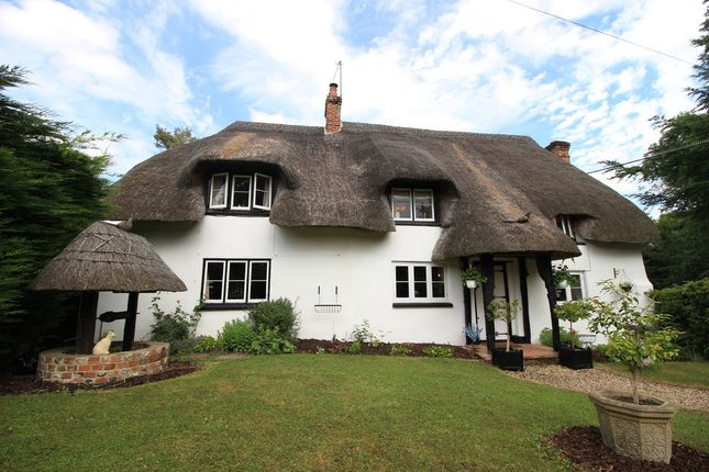 Thumbnail Cottage to rent in Amport, Andover