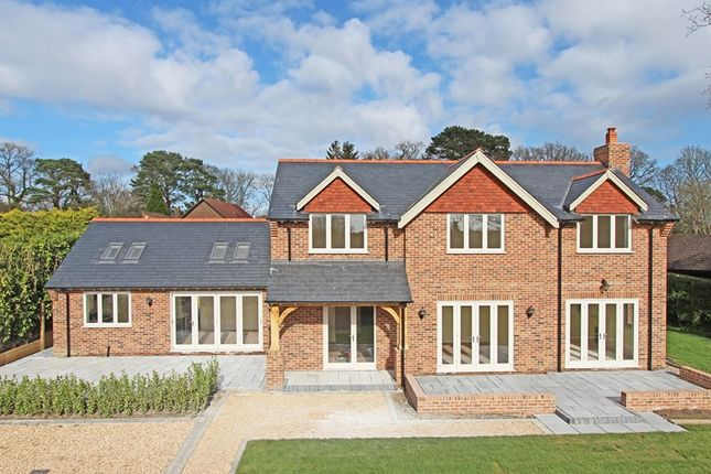 Thumbnail Detached house for sale in North Weirs, Brockenhurst