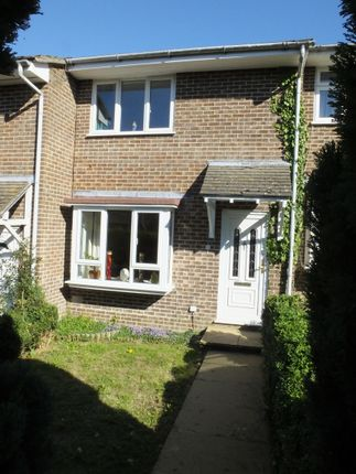 Thumbnail Terraced house to rent in Mantell Close, Lewes