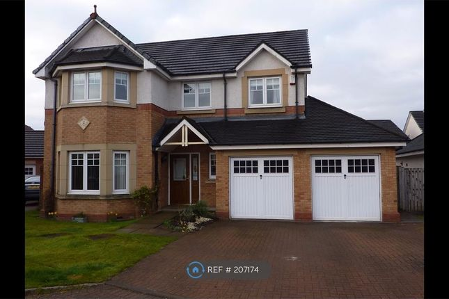 Thumbnail Detached house to rent in Finlayson Place, Larbert