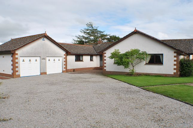 Thumbnail Bungalow for sale in Sweet Dreams, Off Maiden Row, Crocketford