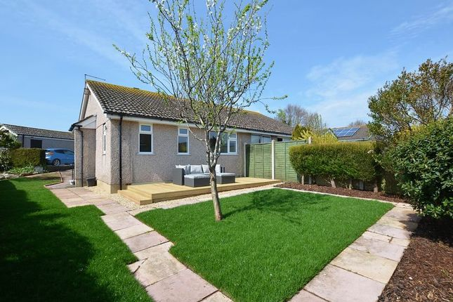 Thumbnail Semi-detached bungalow for sale in Hennock Road, Paignton
