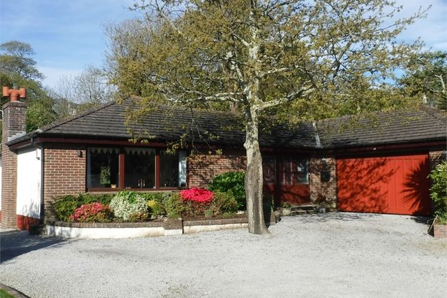 Thumbnail Detached bungalow for sale in Swanpool, Falmouth