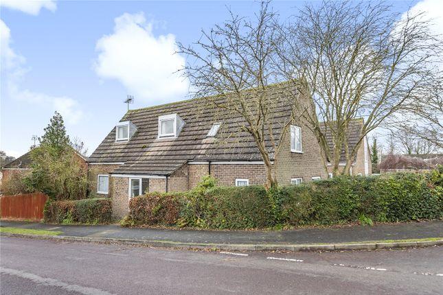 Picture No. 17 of Sun Hill Crescent, Alresford, Hampshire SO24