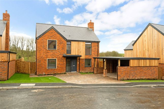 Thumbnail Detached house for sale in Bourne View, Allington, Salisbury, Wiltshire