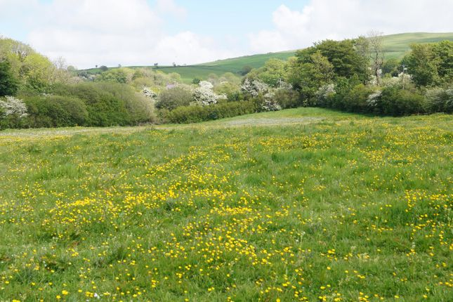 Land for sale in Capel Iwan, Newcastle Emlyn SA38