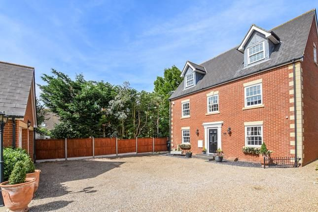 Thumbnail Detached house for sale in Mayland Quay, Mayland, Chelmsford