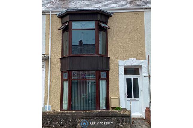 Thumbnail Terraced house to rent in Alexandra Terrace, Brynmill, Swansea