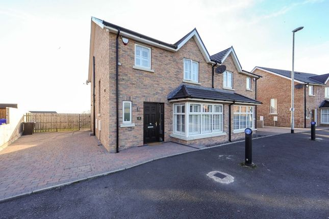Thumbnail Semi-detached house for sale in Millreagh, Dundonald