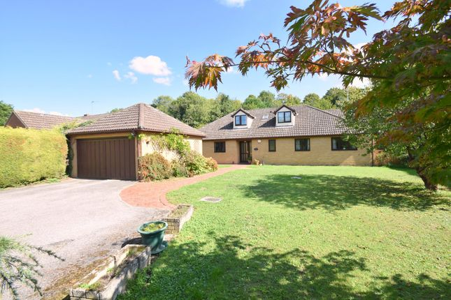 Thumbnail Property for sale in The Dell, Cats Lane, Sudbury