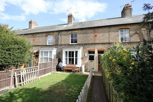 Thumbnail Terraced house to rent in Burleigh Terrace, St. Ives, Huntingdon