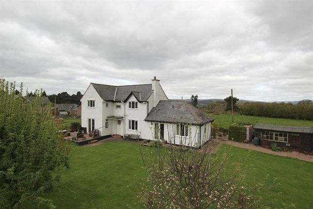 Thumbnail Detached house for sale in Hospital Road, Talgarth, Brecon