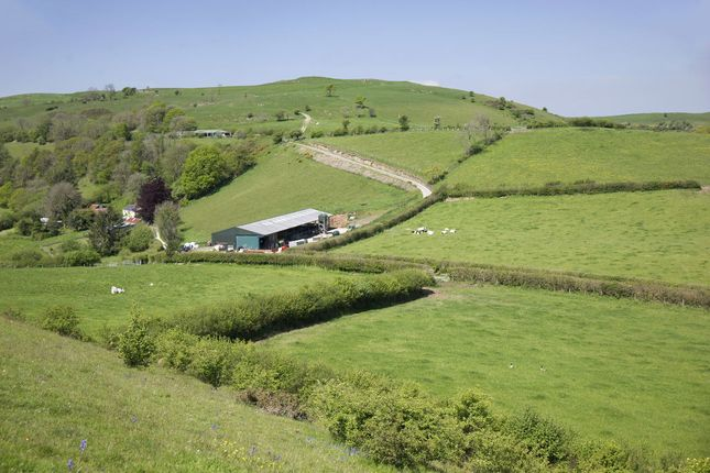 Thumbnail Land for sale in Llanwrda