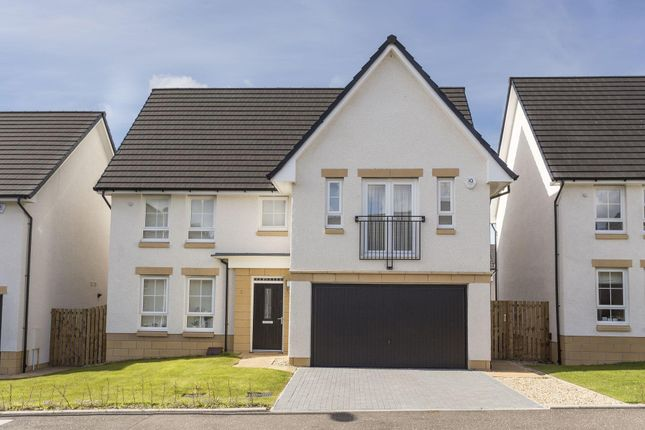 "Thumbnail Detached house for sale in ""Colvend"" at Liberton Gardens, Liberton, Edinburgh"