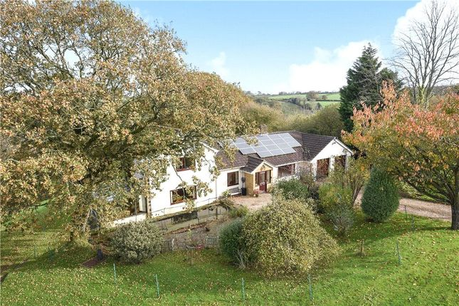 Thumbnail Detached house for sale in School House, Thorncombe, Dorset