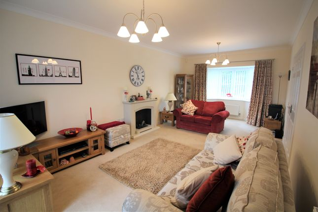 Thumbnail Detached house for sale in Larkspur Drive, Newton Abbot