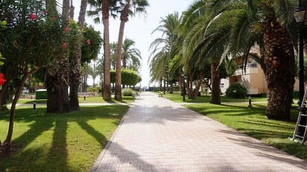 Green Area 1 of Spain, Alicante, Torrevieja