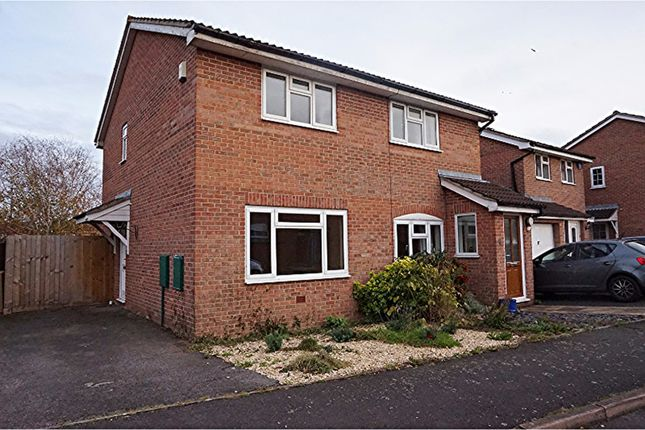 Thumbnail Semi-detached house for sale in Ashbourne Crescent, Taunton