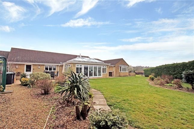 Thumbnail Detached bungalow for sale in Holehouse Lane, Glue Hill, Sturminster Newton, Dorset